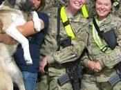 Military Pets Rescue