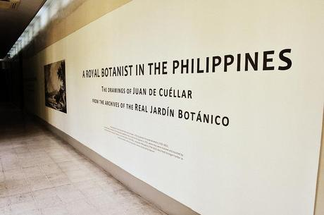The Renovated Galleries of  the National Museum