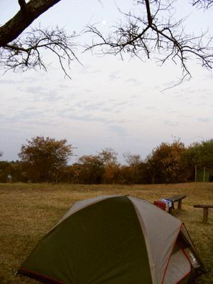 Camping at Nile Safari Lodge, Murchison Falls National Park, Uganda