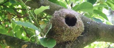 How to make a nesting pocket