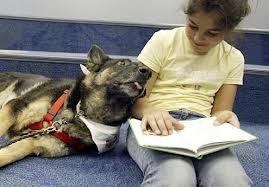 D-o-g helps kids with reading, self-esteem