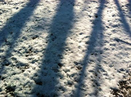 More-Snow-(and-Shadows)-in-Farmingdale-Winter-2013