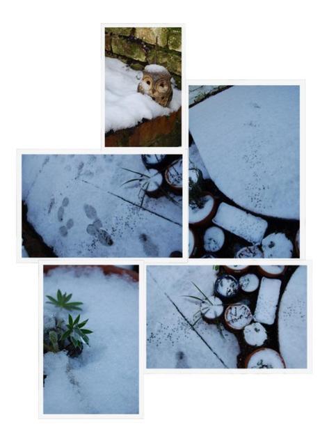 Photo 28-01-2013 21 40 40