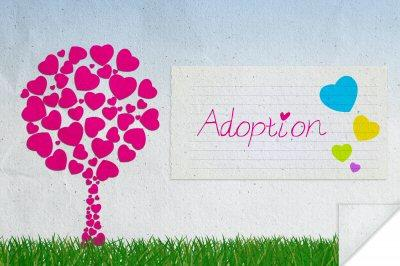 Adoption Love and Commitment