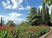 Nikitsky Botanical Garden Crimea