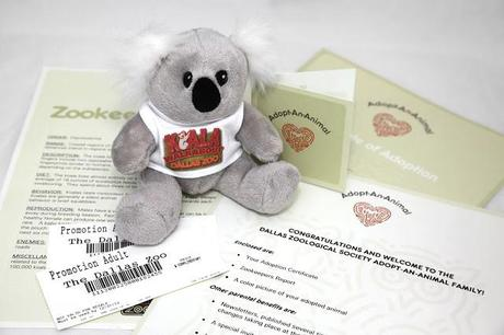 The Dallas Zoo is selling Koala Bears for Valentine's Day