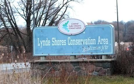 Lynde Shores Sign