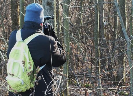 Bob records a Hairy Woodpecker - Lynde Shores Conservation Area, Whitby, Ontario