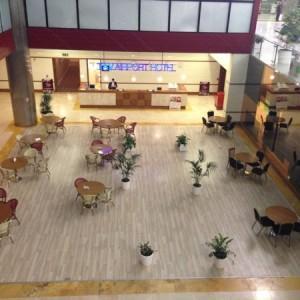 Istanbul_Ataturk_Airport19
