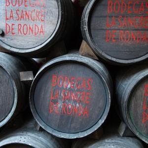 NoGarlicNoOnions_Travel_Ronda_Spain22