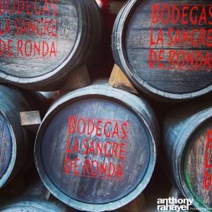 NoGarlicNoOnions_Travel_Ronda_Spain45
