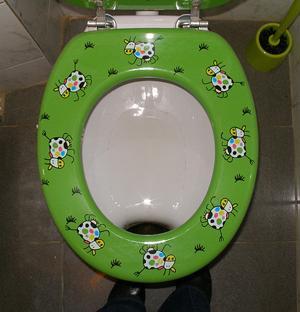 Inspection toilet