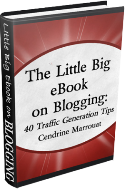The Little Big eBook on Blogging: 40 Traffic Generation Tips by Cendrine Marrouat