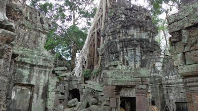 Cambodia Tours: The Jungle Ruins of Ta Prohm