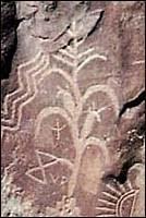 Petroglyph of maize plant