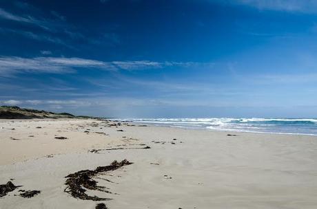sandy discovery bay beach