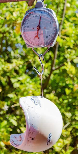 weighing helmet on hanging scales