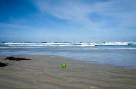 green fishing buoy lying on beach at waters edge