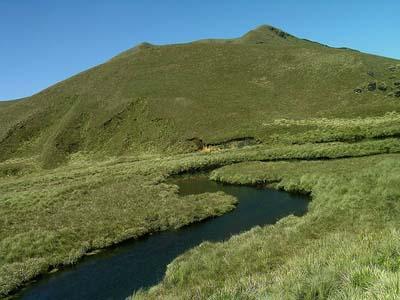 Eravikulam National Park closed to visitors