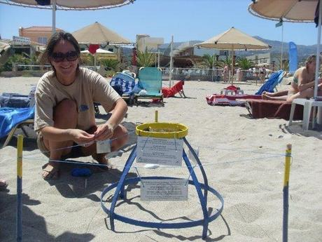 New Greece Sea Turtles Conservation project