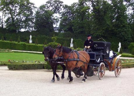 Horse & Carriage Ride at Palace of Versailles - France