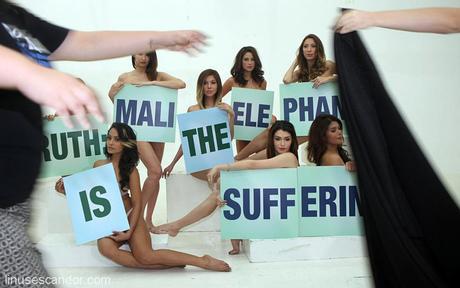 PETA Ad Campaign 2013