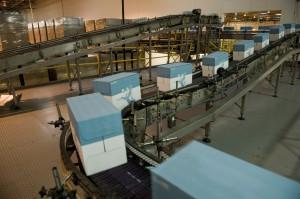 DSC97001 300x199 Post holiday Season: Reverse Logistics Keeps on Giving!