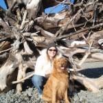 Marcy Adoption Blogger