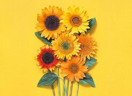 paper-sunflowers-kogamicraft