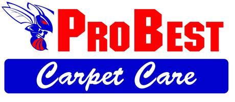 Probest Logo Carpet Care1 Dust mites are leading cause of asthma in children.