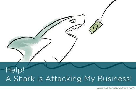 business shark attack