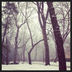 My Instagram of snow falling on my campus today. Haters gonna hate.
