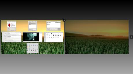 multi tasking in mint using workspace switcher