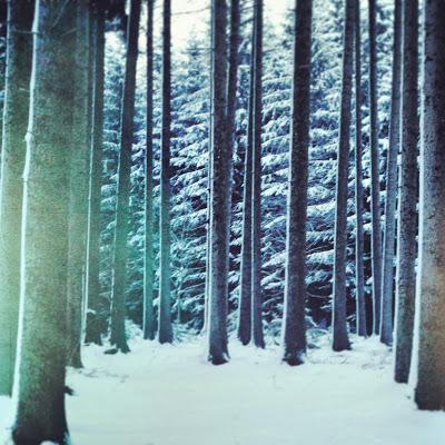 lately.lately it snowed so much...ok it always snows arou...