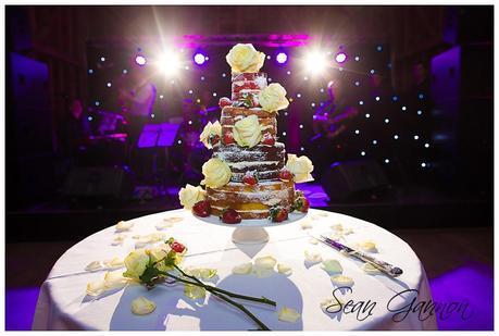 Tewin Bury Farm Wedding Phtographs Sean Gannon 030