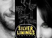 Runaway Magic Silver Linings Playbook