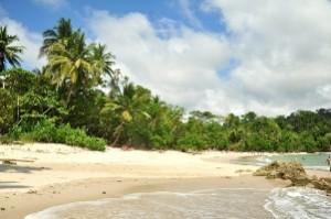 Costa Rica has also become one of the symbols and synonyms of ecotourism all over the world.
