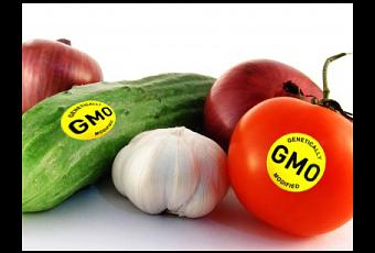 case 12 genetic modified food Genetically modified foods have seeped into the daily diet in the united states what is genetically modified food several centuries ago, when people started domesticating insecticides12 such genetic modification can make the crop.