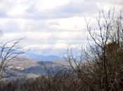 Pink Blue Ridge