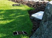 Improving Your Landscape Design with Solar Lights That