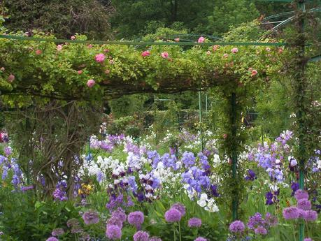 phlox, irises and allium framed by rose-strewn trellis in Claude Monet garden - Giverny - France