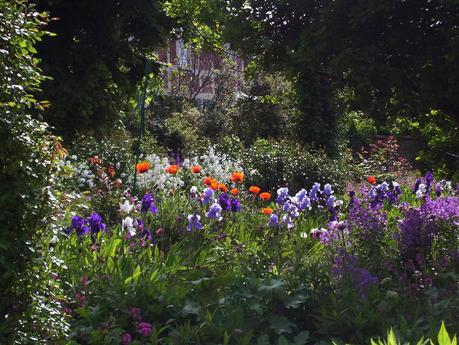 shaded glen of poppies and irises in Claude Monet's house garden - Giverny
