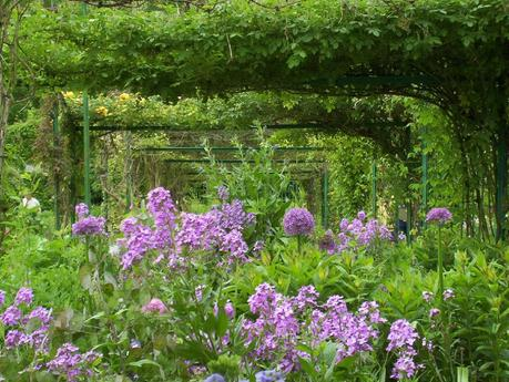 iron trellis with mauve phlox and allium in Claude Monet's Giverny house garden