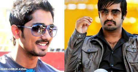 siddharth jr ntr baadshah movie pics stills Hero Siddharth's Special Role In Baadshah?