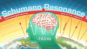 nervous system resonates at the same frequency as the Schumann resonance