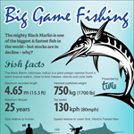 Big Game Fishing, Black Marlin