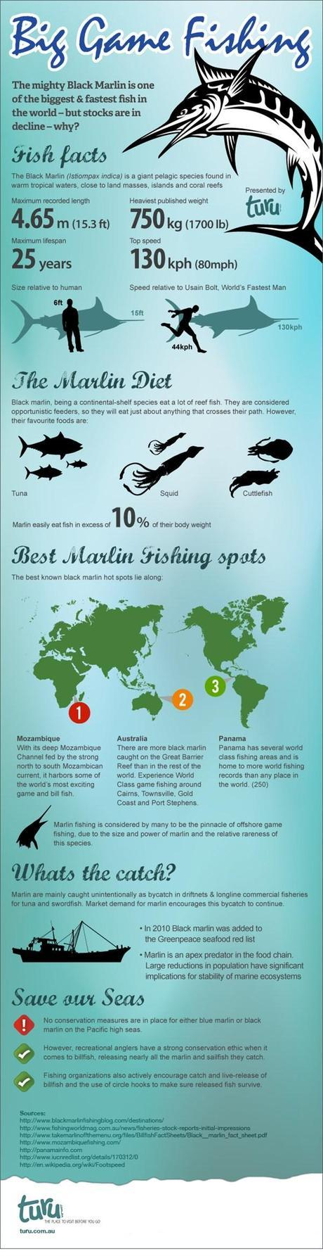 Big Game Fishing, Black Marlin Infographic