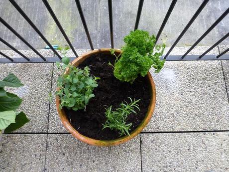 Balcony Herb Garden Ideas images