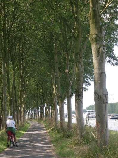 Cycling the Amsterdam-Rhine Canal