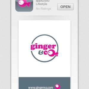 Ginger_Co_Application1